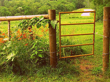 Gate to field by Terry and Brittany Sprinkle