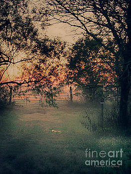 Gated Sunset by Charles McKelroy