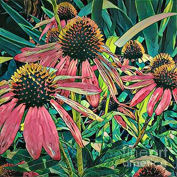 Gathering of Coneflowers by Diane Miller