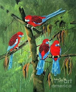 Gathering of Crimson Rosellas by Audrey Russill