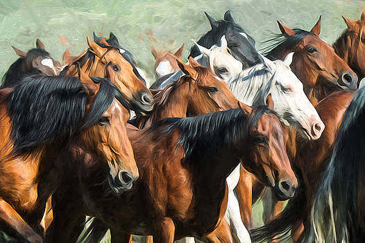 Gathering the Herd by Judy Neill
