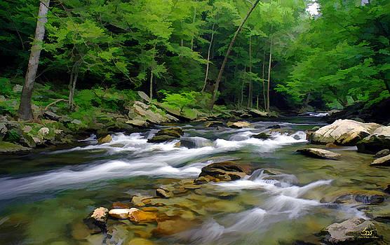 Sam Davis Johnson - Gatlinburg Stream