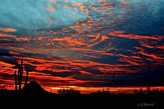 Gavilan Peak Sunset 2 by L L Stewart