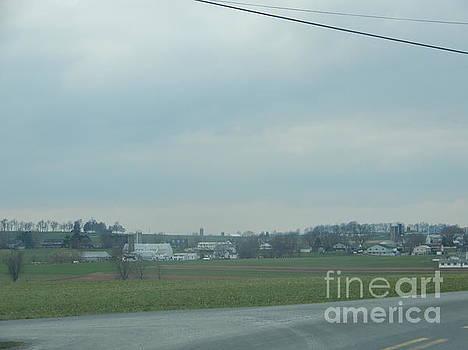 Christine Clark - Gazing at a Scenic Amish Vista