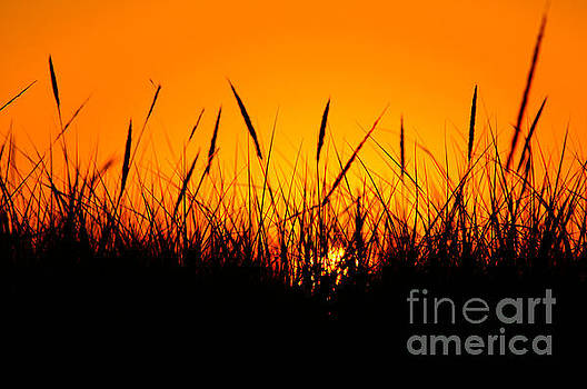 Gearhart Sunset by Sue Lyon-Myrick