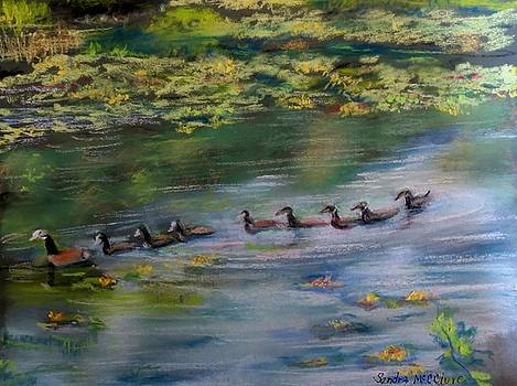 Geese in a Row by Sandra McClure