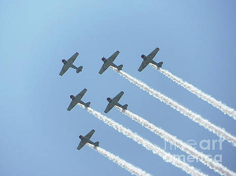 Geico SkyTypers by Scott Evers