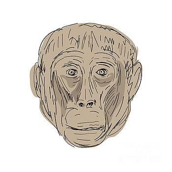 Gelada Monkey Head  Drawing by Aloysius Patrimonio