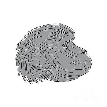 Gelada Monkey Head Side Drawing by Aloysius Patrimonio