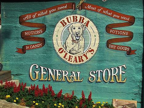 General Store by Ginger Wemett
