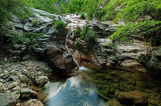 Enrico Pelos - GENOISE HISTORIC ACQUEDUCT LAKES WITH LITTLE DOG - acquedotto storico genovese laghetti e cagnolina