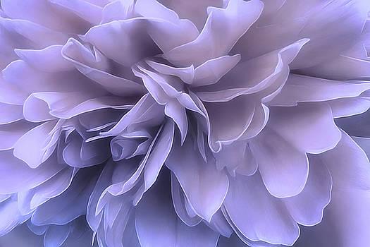Gentle Breeze by Darlene Kwiatkowski
