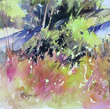 Gentle Slope 2 by Rae Andrews