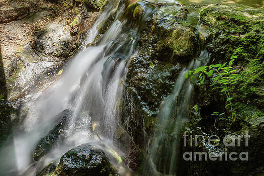 Gentle spring fed waterfall by Thomas Gibson