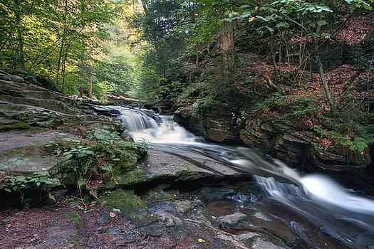 Gene Walls - Gentle Summer Flow Over Conestoga Falls