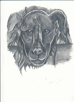 Geometric Dog by Luke Aldington