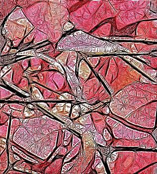 Geometry of Leaves in Pink by Ajp