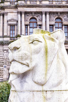 Sophie McAulay - George Square lion statue