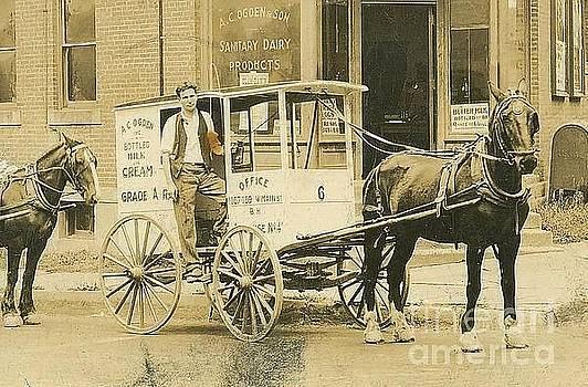 Peter Gumaer Ogden - George T Ogden with Horse Drawn Milk Wagon ca 1915