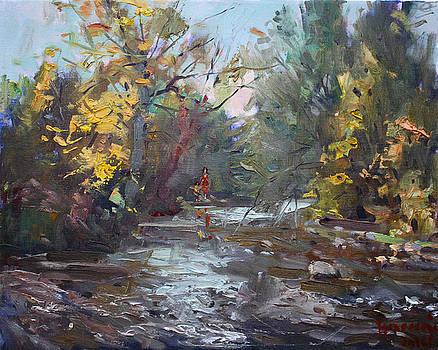 Ylli Haruni - Georgetown Fall Colors