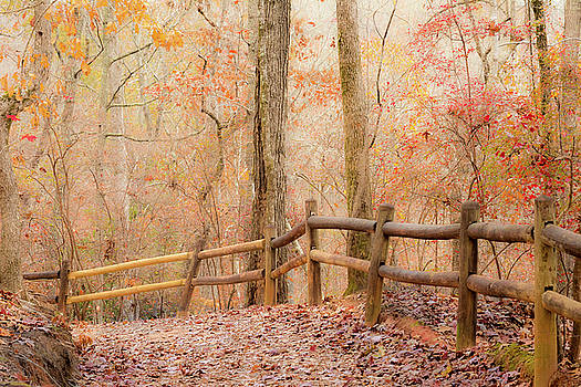 Georgia Fall by RC Pics