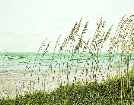 Georgia Ocean Scene by Mary Ann King