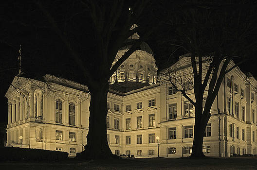 Georgia State Capitol Building by David Smith