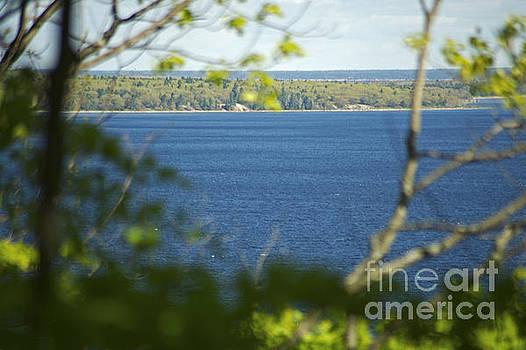 Elaine Mikkelstrup - Georgian Bay From Bluff Trail