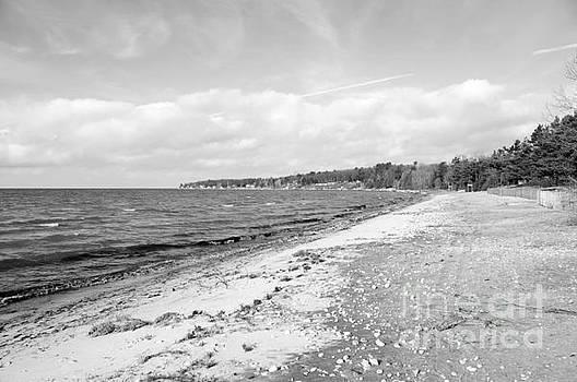 Elaine Mikkelstrup - Georgian Bay Winter Beach