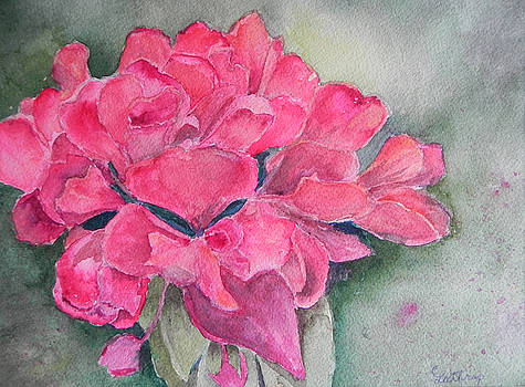 Geranium by Christine Lathrop