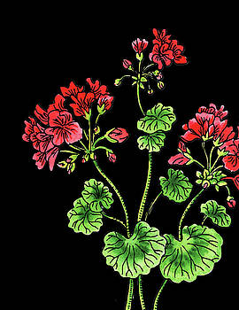 Geranium Flower Watercolour  by Irina Sztukowski