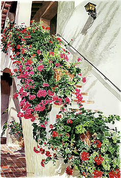 Geranium Staircase  by David Lloyd Glover