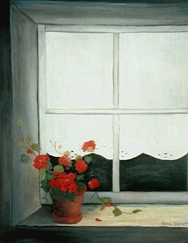 Geraniums in Window by Glenda Barrett