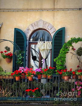 Geraniums on a Tuscan Terrace by Lainie Wrightson