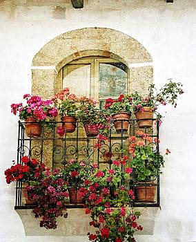 Dee Flouton - Geraniums on Balcony
