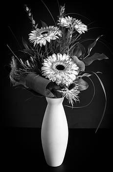 Gerber Daisy Bouquet by Garvin Hunter
