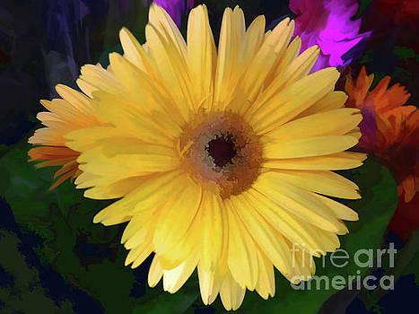 Gerber Yellow  by Jasna Dragun