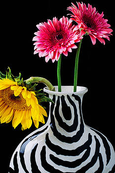 Gerbera Daisies In Striped Vase by Garry Gay