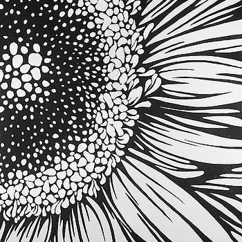 Gerbera Flower Outline Style by Atelier B Art Studio