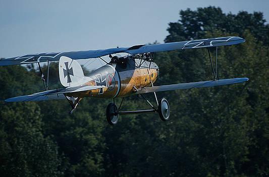 John Clark - German Albatros D.III in flight