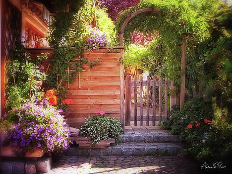 German Garden by Andrea Platt