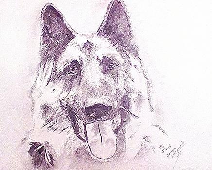 German Sheapherd 2 by Crystal Webb