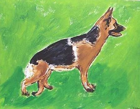 German Shepard by Kathy Young