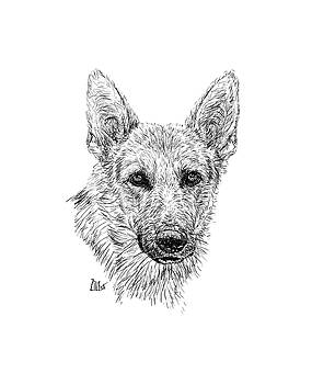 German Shepherd @wildnsweetluna by ZileArt