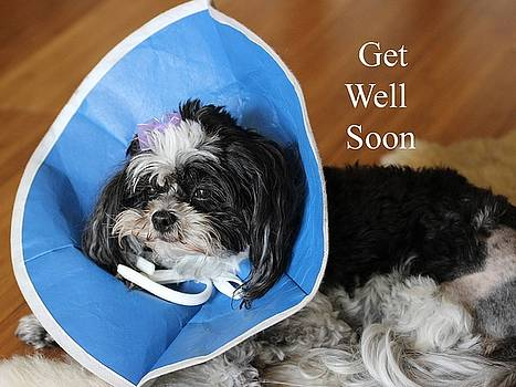 Gary Canant - Get Well Greeting Card