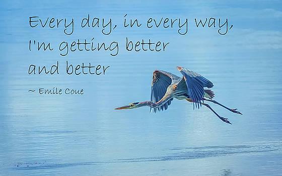 Getting Better by John M Bailey