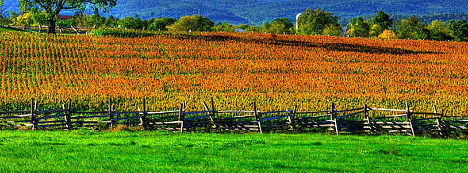 Gettysburg at Rest - Fields, at Times, That Still Run Red - View From Mc Pherson Ridge Adams County by Michael Mazaika