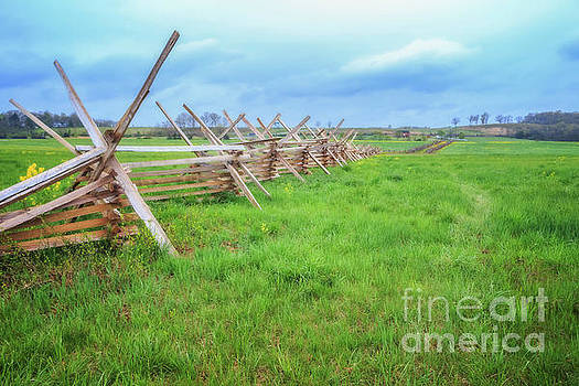 Gettysburg Battlefield by Elizabeth Dow