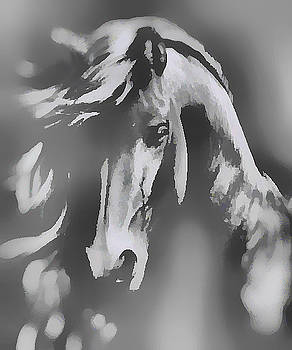Ghost Horse by Barbara A Lane