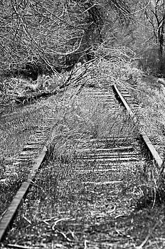 Ghost Rail by Juls Adams
